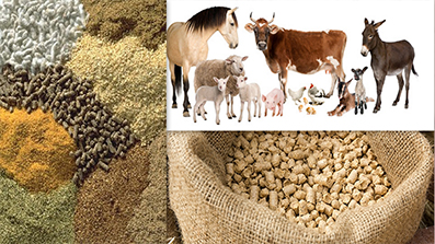 How to make dry animal feed into powder